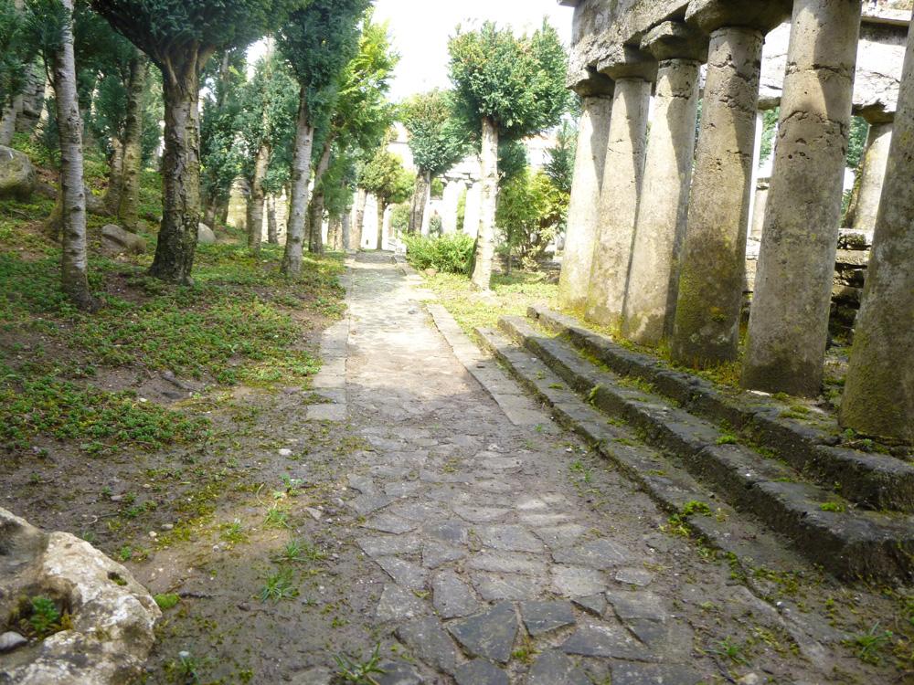 Figura 6. La strada principale del sito e la parte frontale del tempio di Apollo
