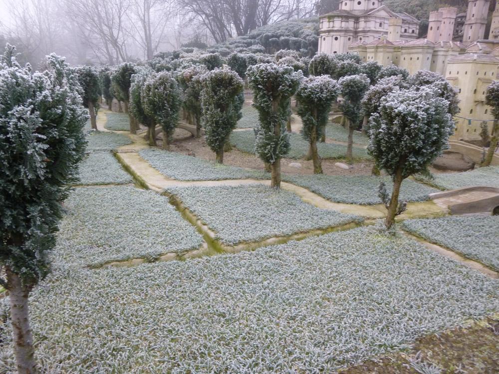 Figura 3. L'aspetto dei campi in inverno